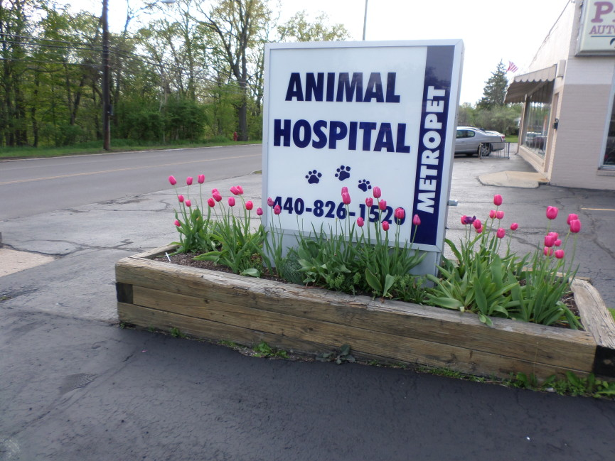 Outside MetroPet Veterinary Clinic- Contact Us today!