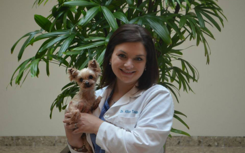 MetroPet Veterinary Clinic - Dr. Alice poses with Gidget